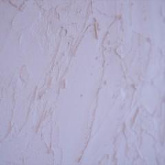 壁は珪藻土で塗装しました。このざっくりと塗った感じが素敵ですね。