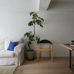 素材を活かした空間は、どんな家具も映える部屋になりました。