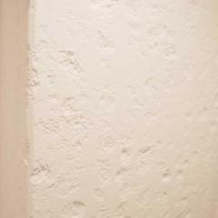 廊下一面に貼られていたタイルを取り、そのまま白塗装。