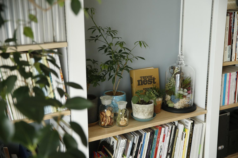 リビングの本棚の一角に造られたグリーンコーナーがかわいい。